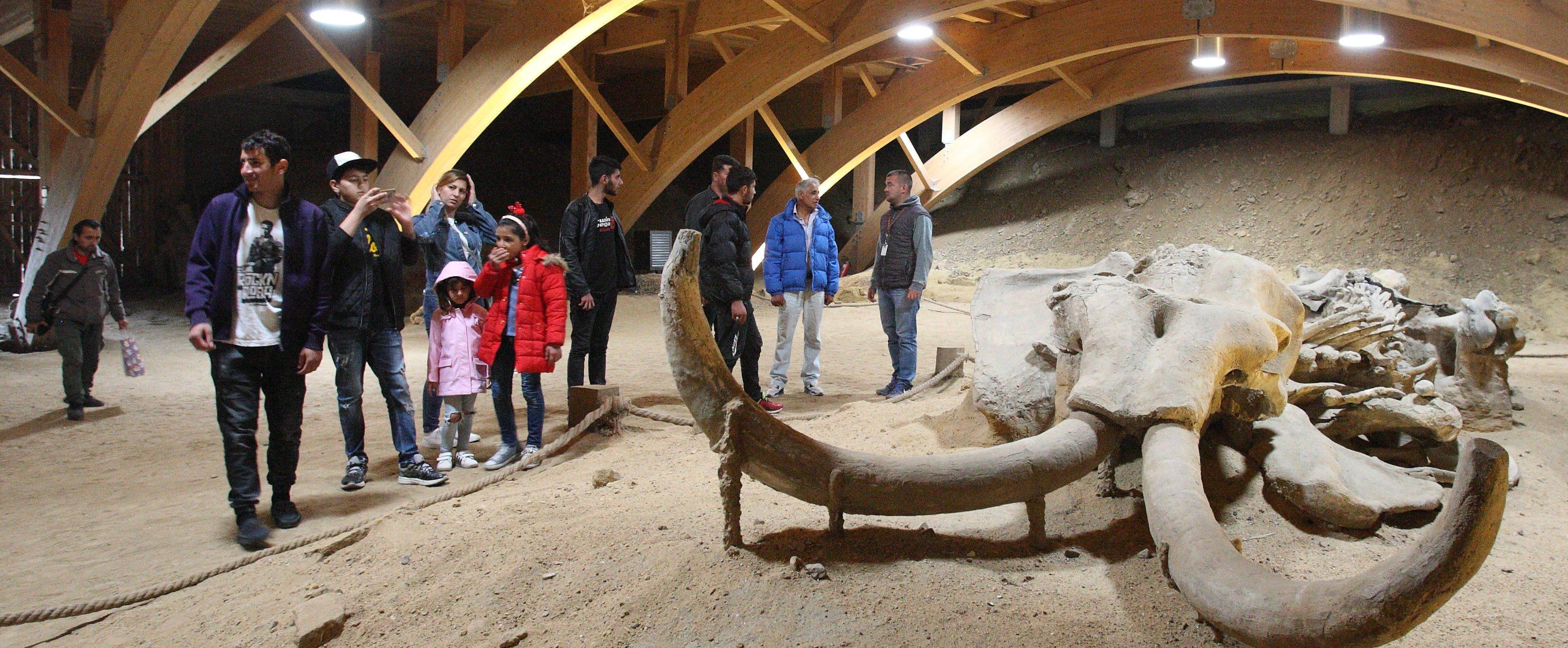 Migranti posetili arheološko nalazište i Zoološki vrt
