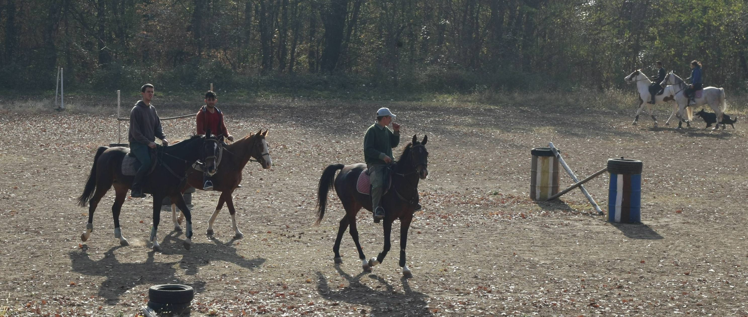 Migrants from the Reception Centre in Obrenovac visited the Equestrian Centre MBM in Lipovica